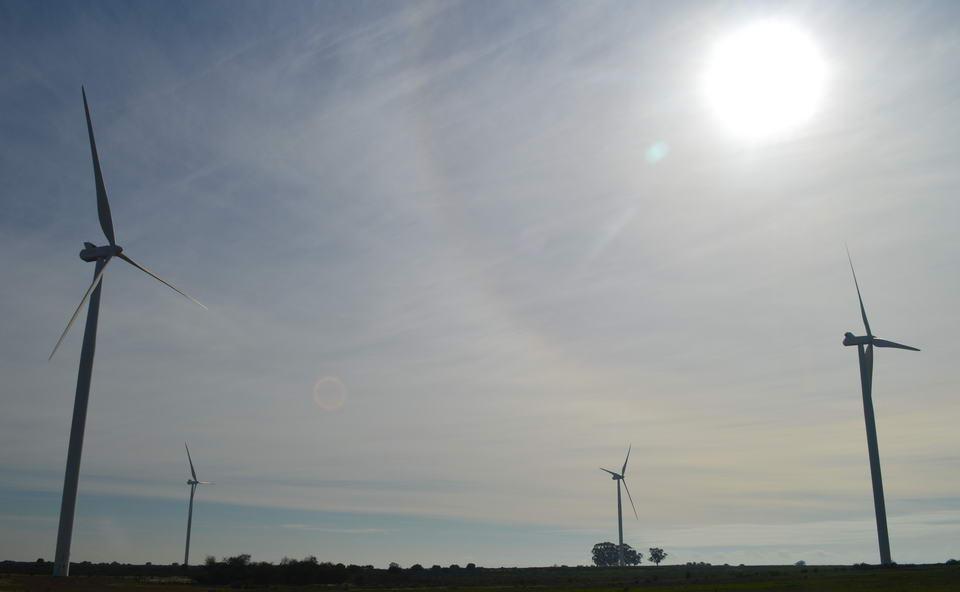 Renewable Energy Application Assistance